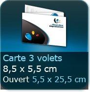 Cartes de visite 3 volets 85 x 55 mm fermé - 255 x 55 ouvert - impression couleur Recto et Verso quadri (livré à plat)