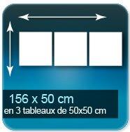 Affiches Assemblage de 3 tableaux de 50 x 50 cm pour un format de 156 x 50 cm