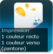 Liasse/Carnet autocopiant 1 Pantone recto-1pantone verso