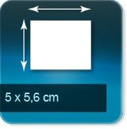 Magnets 50x 56mm