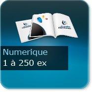 Brochures / Magazines Quantité inf.500ex express(numérique haute qualité)
